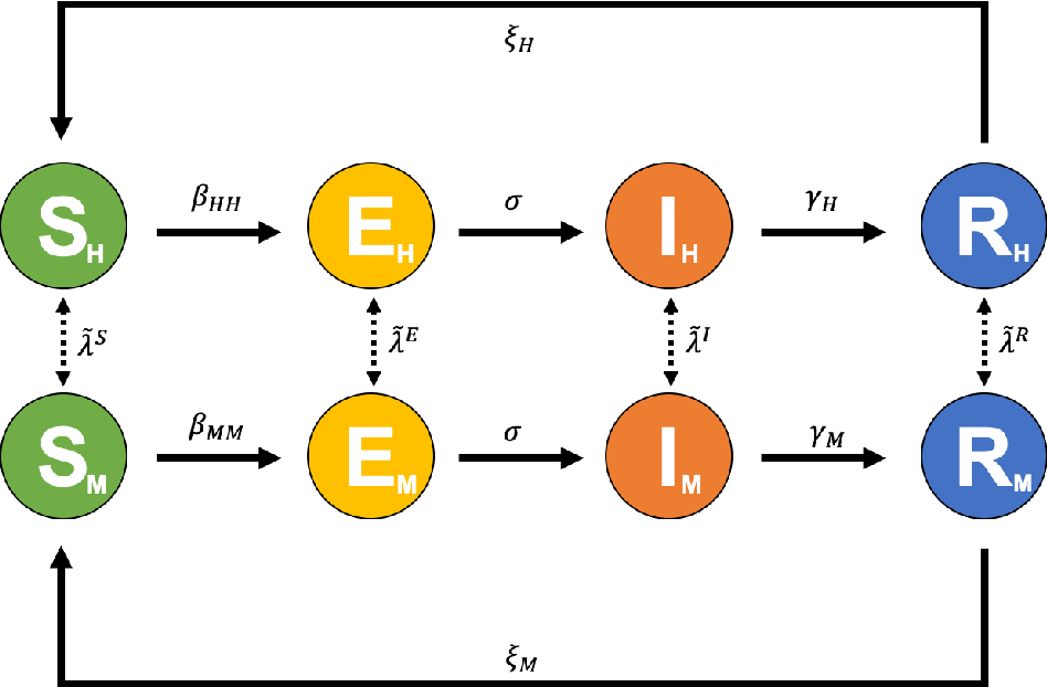 Figure 3 for Digital twins based on bidirectional LSTM and GAN for modelling COVID-19