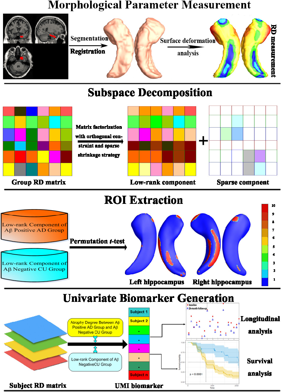 Figure 1 for Developing Univariate Neurodegeneration Biomarkers with Low-Rank and Sparse Subspace Decomposition