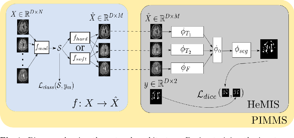 Figure 1 for PIMMS: Permutation Invariant Multi-Modal Segmentation