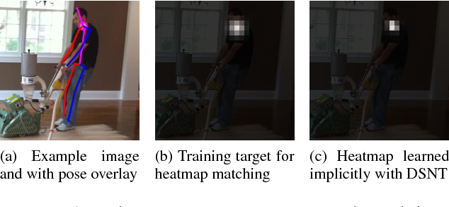 Figure 3 for Numerical Coordinate Regression with Convolutional Neural Networks