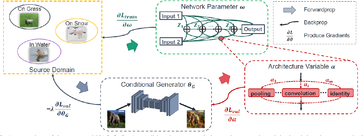 Figure 3 for NAS-OoD: Neural Architecture Search for Out-of-Distribution Generalization