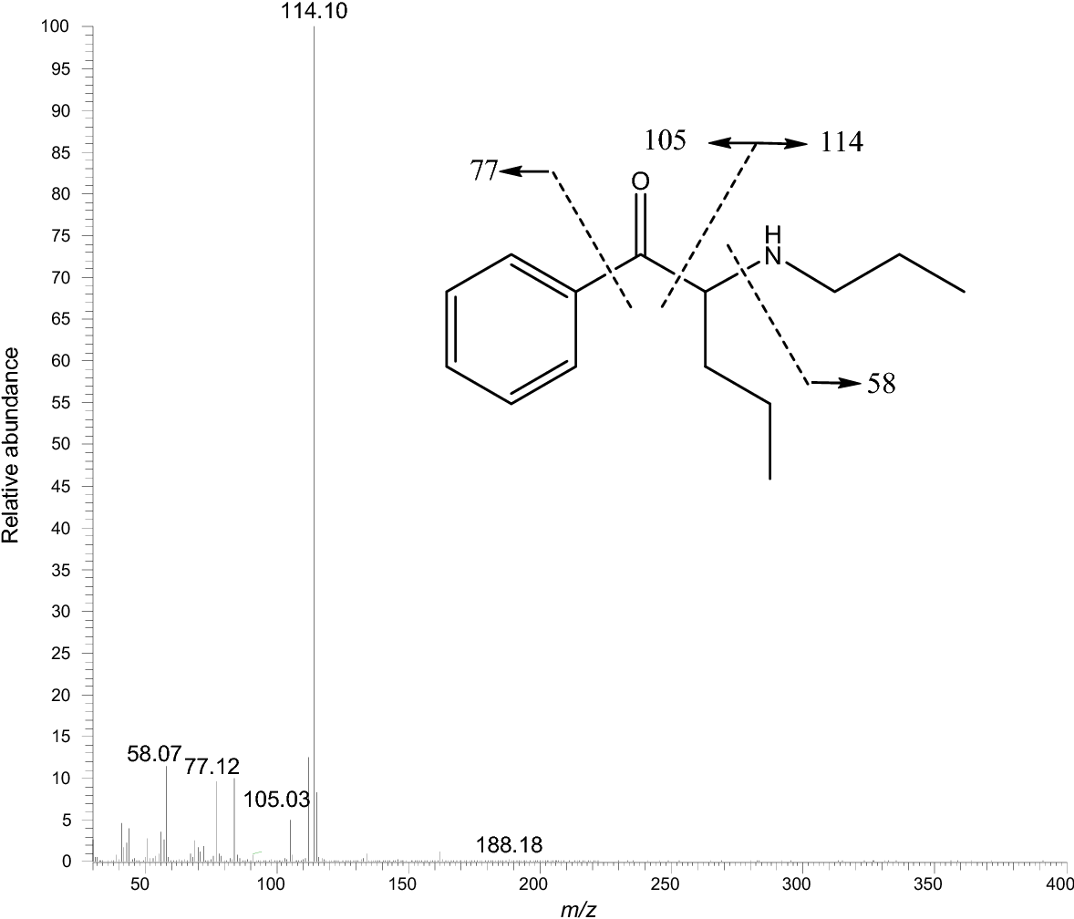 Fatal case of poisoning with a new cathinone derivative: α