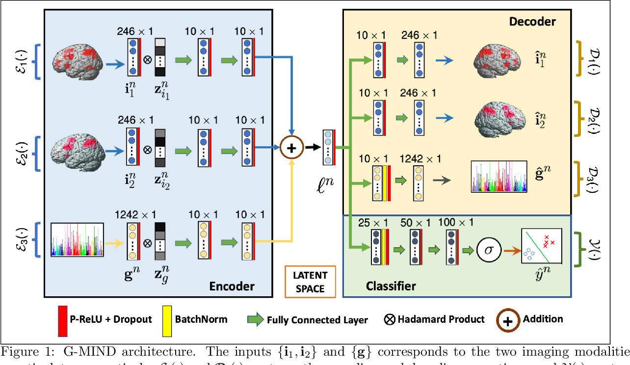 Figure 1 for G-MIND: An End-to-End Multimodal Imaging-Genetics Framework for Biomarker Identification and Disease Classification