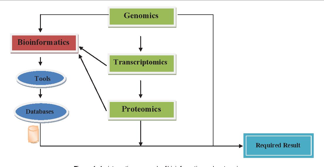 Figure 1: An integrative approach of bioinformatics and proteomics .