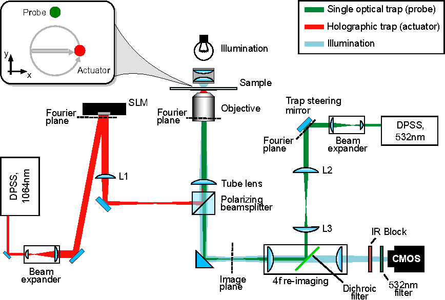 Figure 5 from 'Lissajous-like' trajectories in optical tweezers