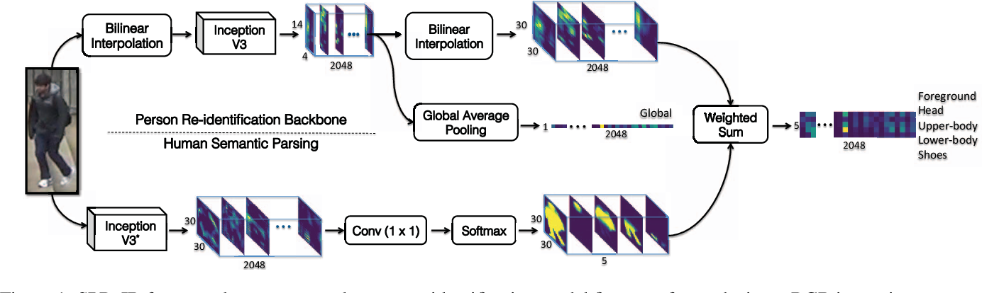 Figure 1 for Human Semantic Parsing for Person Re-identification