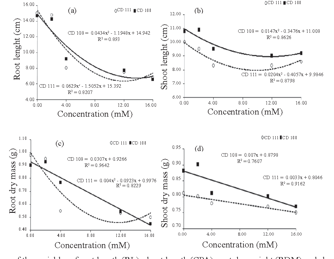 Figure 1. Responses of the variables of root length (RL), shoot length (CPA), root dry weight (RDM) and shoot dry weight (SDM) in relation to four concentrations of acetic acid in cultivars CD 108 and CD 111.