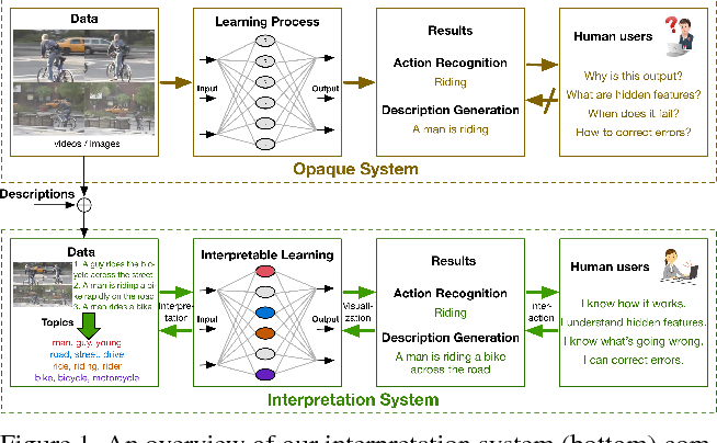 Figure 1 for Improving Interpretability of Deep Neural Networks with Semantic Information
