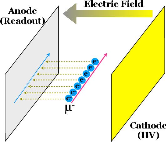 Figure 1 for PILArNet: Public Dataset for Particle Imaging Liquid Argon Detectors in High Energy Physics