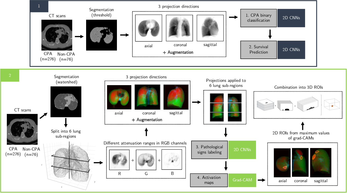 Figure 2 for SAPSAM - Sparsely Annotated Pathological Sign Activation Maps - A novel approach to train Convolutional Neural Networks on lung CT scans using binary labels only