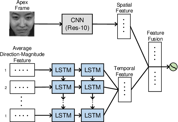 Figure 1 for A Novel Apex-Time Network for Cross-Dataset Micro-Expression Recognition