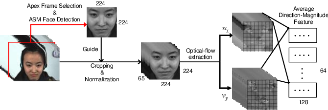 Figure 2 for A Novel Apex-Time Network for Cross-Dataset Micro-Expression Recognition