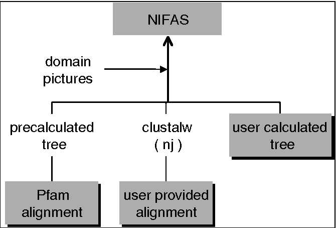 Figure 1 from NIFAS: visual analysis of domain evolution in
