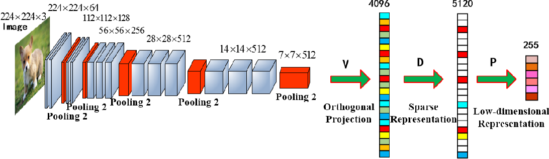 Figure 1 for Joint Learning of Discriminative Low-dimensional Image Representations Based on Dictionary Learning and Two-layer Orthogonal Projections