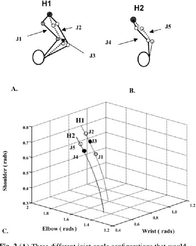 Figure 2 From Aspects Of Joint Coordination Are Preserved During