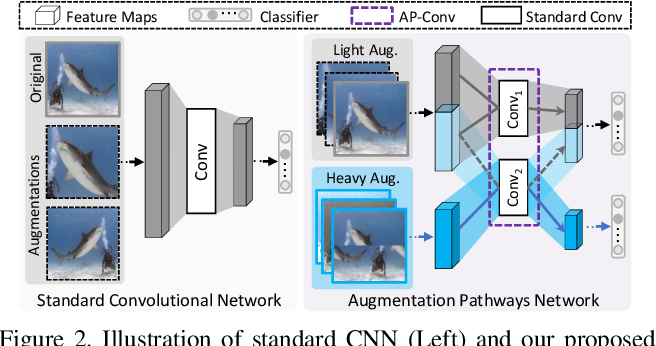Figure 3 for Augmentation Pathways Network for Visual Recognition