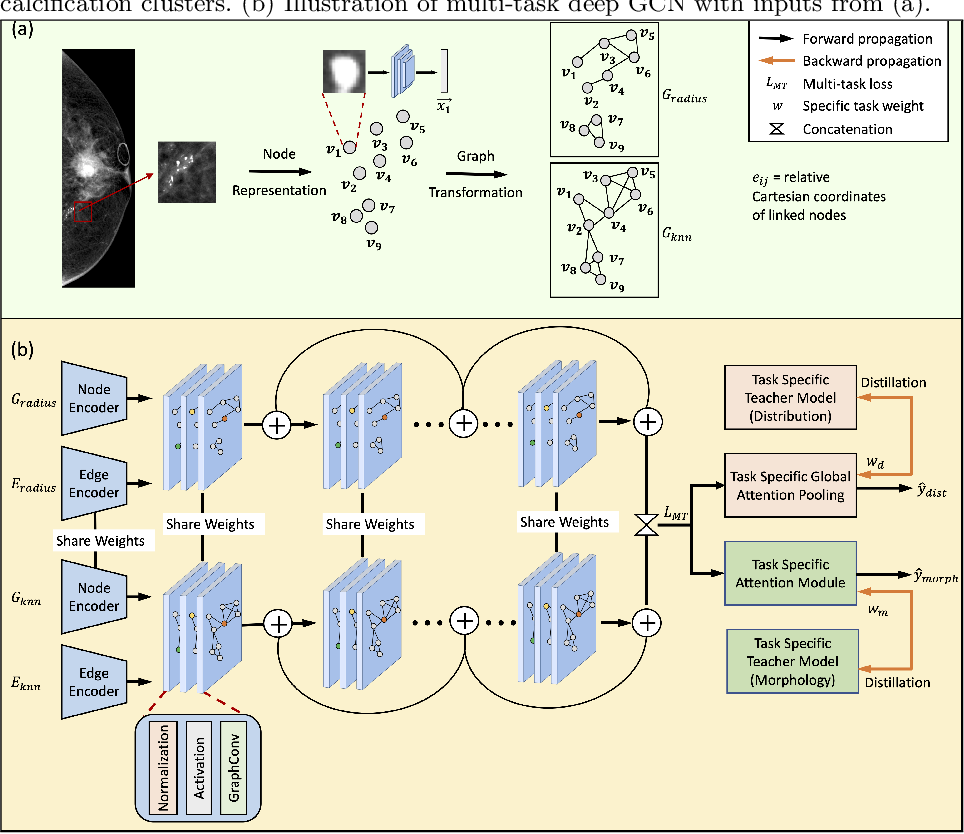 Figure 3 for Multi-task Graph Convolutional Neural Network for Calcification Morphology and Distribution Analysis in Mammograms