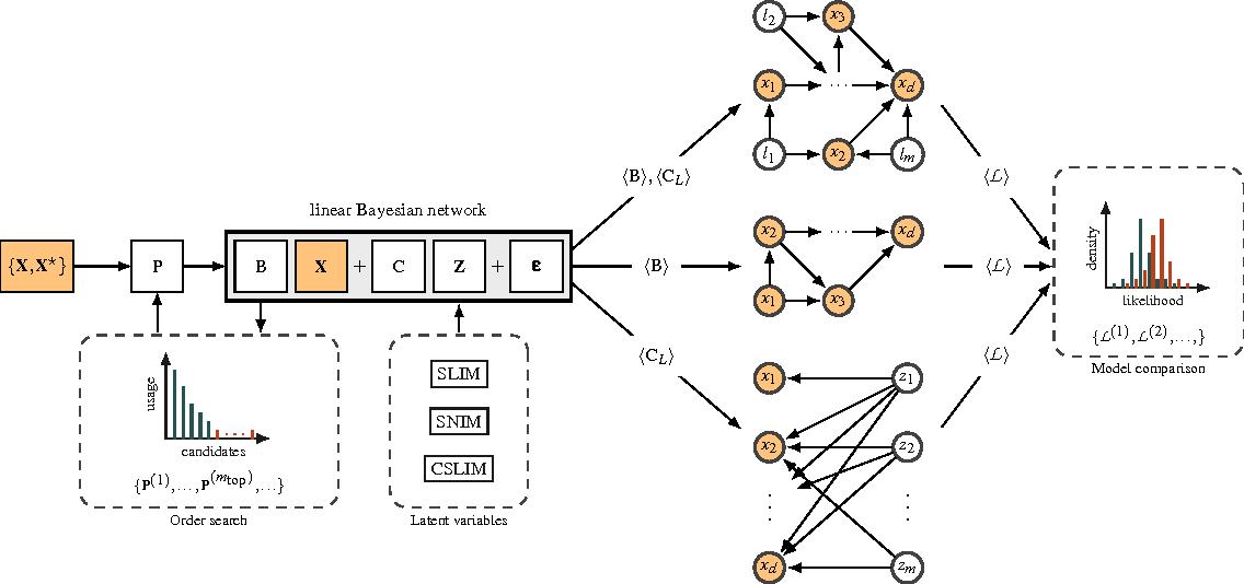 Figure 1 for Sparse Linear Identifiable Multivariate Modeling