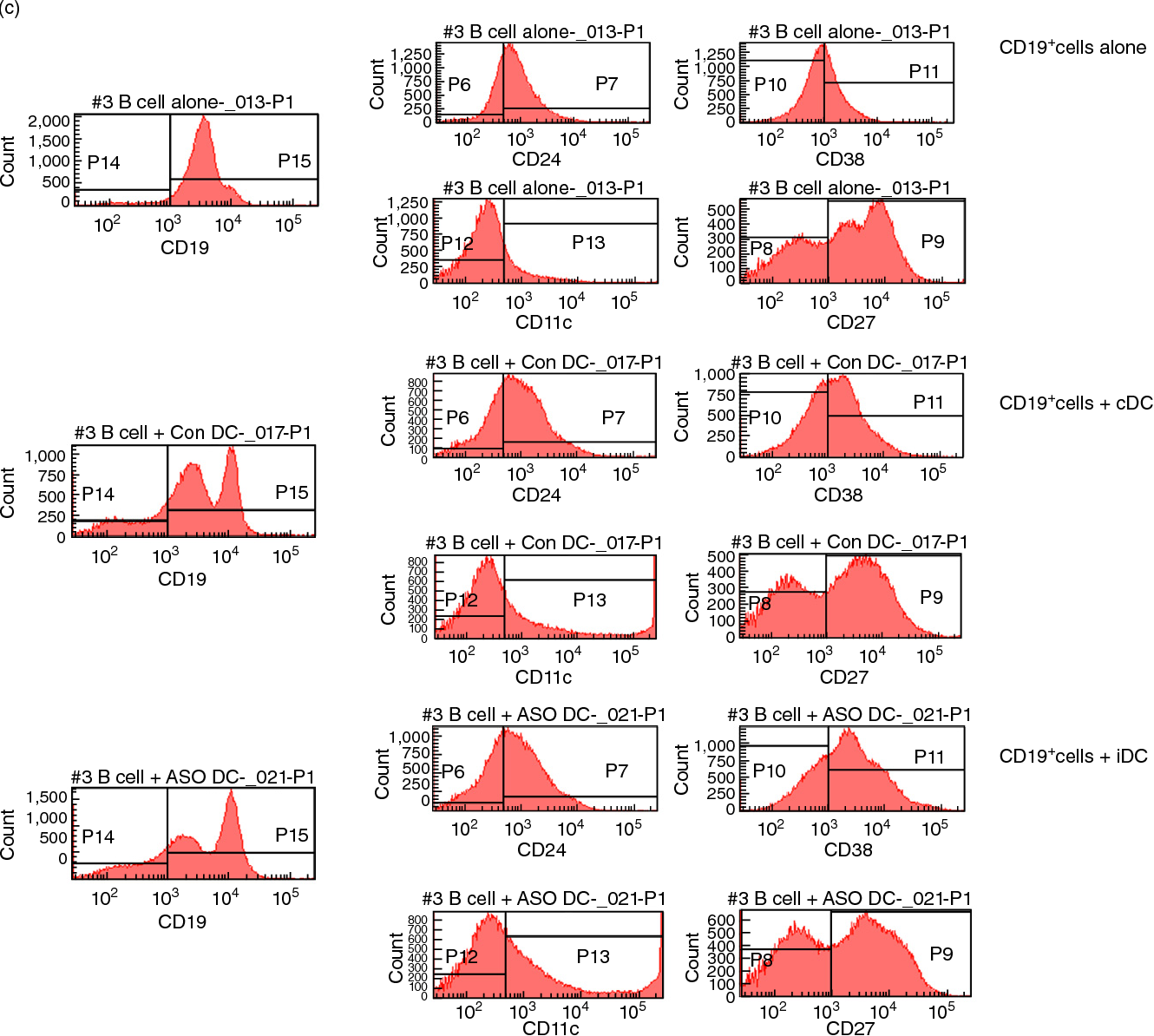 Fig. 2. The frequency and absolute cell numbers of suppressive B cells is increased in co-culture with control DC (cDC) and immunosuppressive DC (iDC) in vitro. (a) Flow cytometry was conducted as shown. The frequency of human suppressive B cells (CD19+CD24+CD38+CD27+/–) measured after a 2-day co-culture of thawed normal human donor peripheral blood mononuclear cells (PBMC) with autologous cDC or iDC generated from the same PBMC donor. The quadrant plots at the top of the figure show the frequency of CD19+CD11c– cells as a percentage of total viable cells in culture. The quadrant plots in the lower middle of the figure show the CD24+CD38+/intermediate cell frequency as a percentage of CD19+CD11c– cells. The quadrant plots and histograms at the bottom serve to distinguish whether the differences in the frequencies of the B cells analysed in the preceding quadrants are due to changes in the expression of single surface molecules (CD27) or to proliferative/differentiation events [5-bromo-2-deoxyuridine (BrdU)+] in response to provision of the DC in the co-culture. These data are representative of the outcome of triplicate co-cultures on at least two independent occasions using PBMC from two unrelated healthy adults. The events coloured green represent the CD38+CD24+ cells inside the CD19+CD11c– parental population. The events in yellow represent the BrdU+ cells and the events in light blue represent the CD27+ cells. (b) A graphical summary of the frequency (upper graphs) and the absolute number (lower graphs) of CD19+CD24+CD38+CD11c– B cells detected in 2- day co-cultures of freshly collected PBMC and control DC (cDC) or immunosuppressive DC (iDC). The graphs at the top summarize the frequency of proliferative (BrdU) cells as a percentage of CD19+CD24+CD38+CD11c– B cells (top left) and as a percentage of CD27+CD19+CD24+CD38+CD11c– B cells (top right). The graphs at the bottom summarize the absolute cell numbers of CD19+CD24+CD38+CD11c– B cells (bottom left) and of CD27