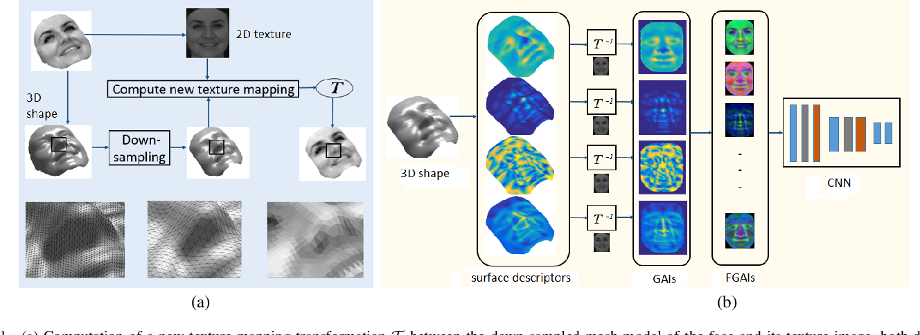 Figure 1 for Learned 3D Shape Representations Using Fused Geometrically Augmented Images: Application to Facial Expression and Action Unit Detection