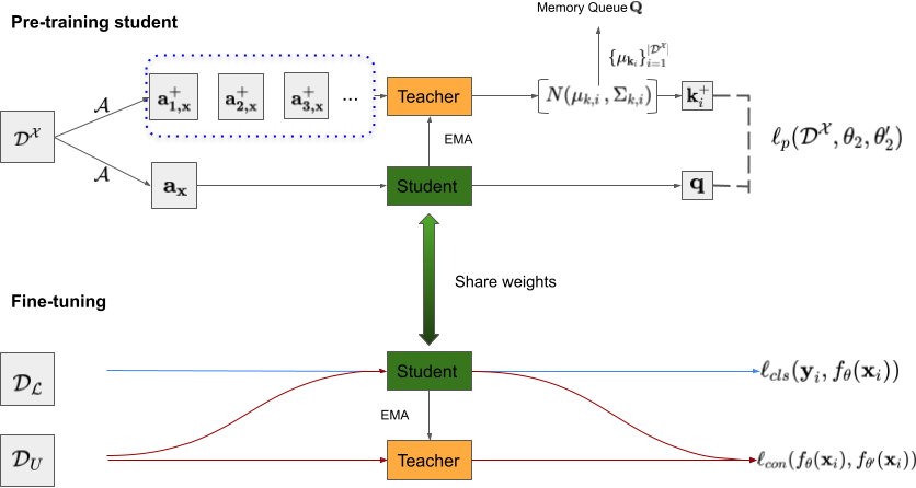 Figure 1 for Self-supervised Mean Teacher for Semi-supervised Chest X-ray Classification