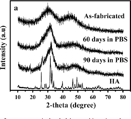 Fig. 5 XRD patterns of a vancomycin-loaded borate bioactive glass cement as-fabricated and after immersion in PBS for 60 and 90 days, and b vancomycin-loaded borate bioactive glass (BG) cement after implantation for 8 weeks in the rabbit tibial defects. For comparison, the XRD pattern of a commercial hydroxyapatite (HA) is shown in (a), and the XRD patterns of cortical bone and a reference hydroxyapatite (HA) (JCPDS 72-1243) are shown in (b)