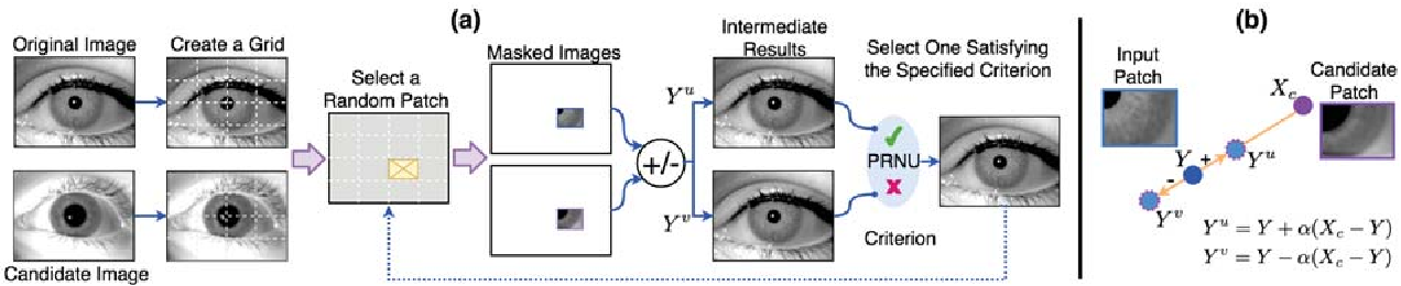 Figure 3 for Spoofing PRNU Patterns of Iris Sensors while Preserving Iris Recognition