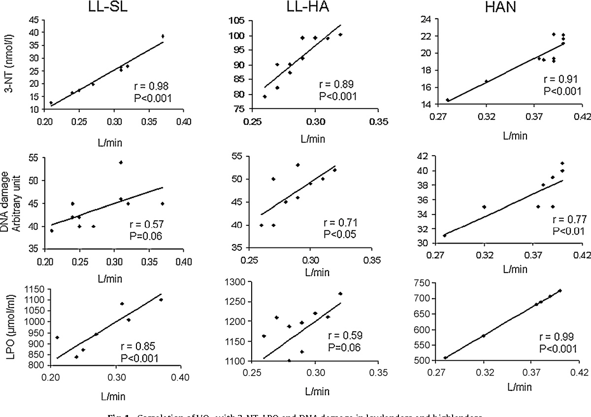 Fig. 1. Correlation of VO2 with 3-NT, LPO and DN