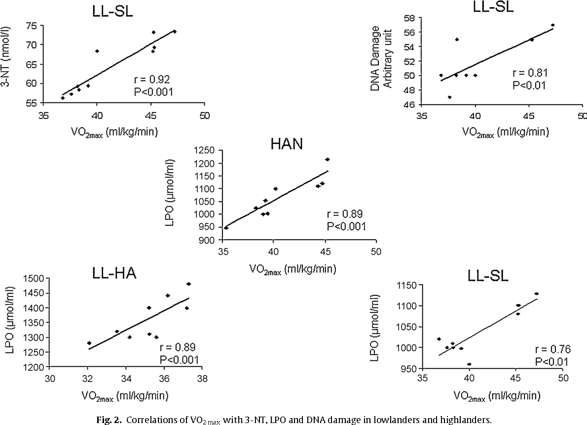 Fig. 2. Correlations of VO2max with 3-NT, LPO