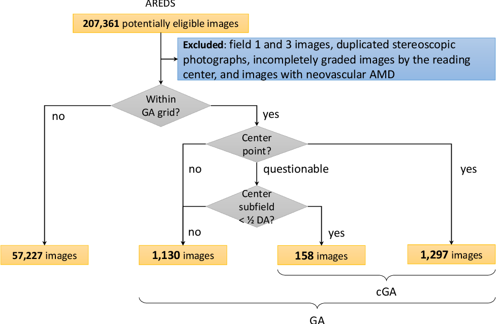 Figure 2 for A deep learning approach for automated detection of geographic atrophy from color fundus photographs