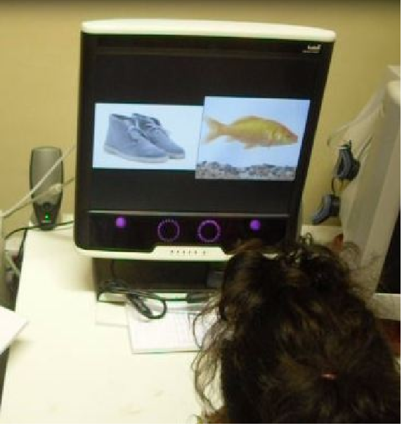 An Eye Tracker based Computer System to Support Oculomotor and