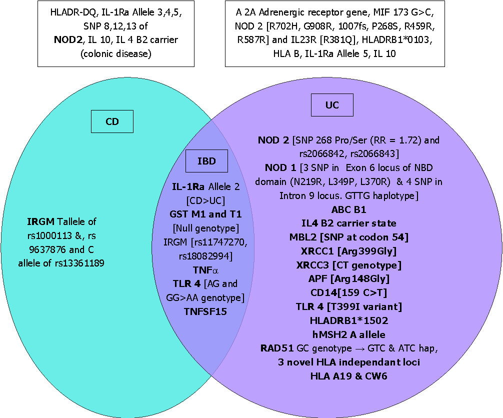 figure 1 association of different genes with inflammatory bowel disease,  ulcerative colitis and crohn's disease