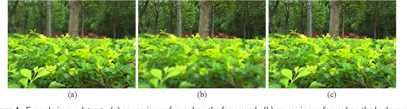 Figure 1 for Real-MFF Dataset: A Large Realistic Multi-focus Image Dataset with Ground Truth