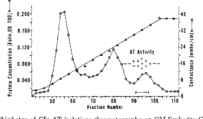 anaphylatoxin inactivator