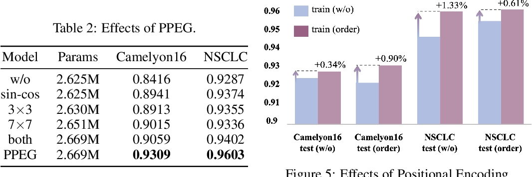Figure 4 for TransMIL: Transformer based Correlated Multiple Instance Learning for Whole Slide Image Classication