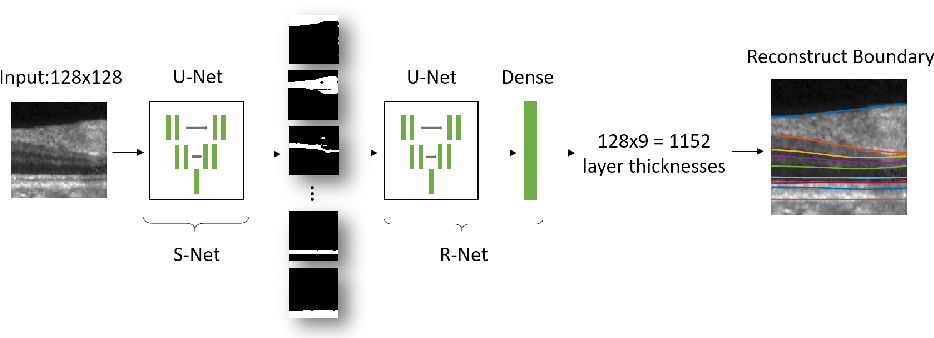 Figure 1 for Topology guaranteed segmentation of the human retina from OCT using convolutional neural networks