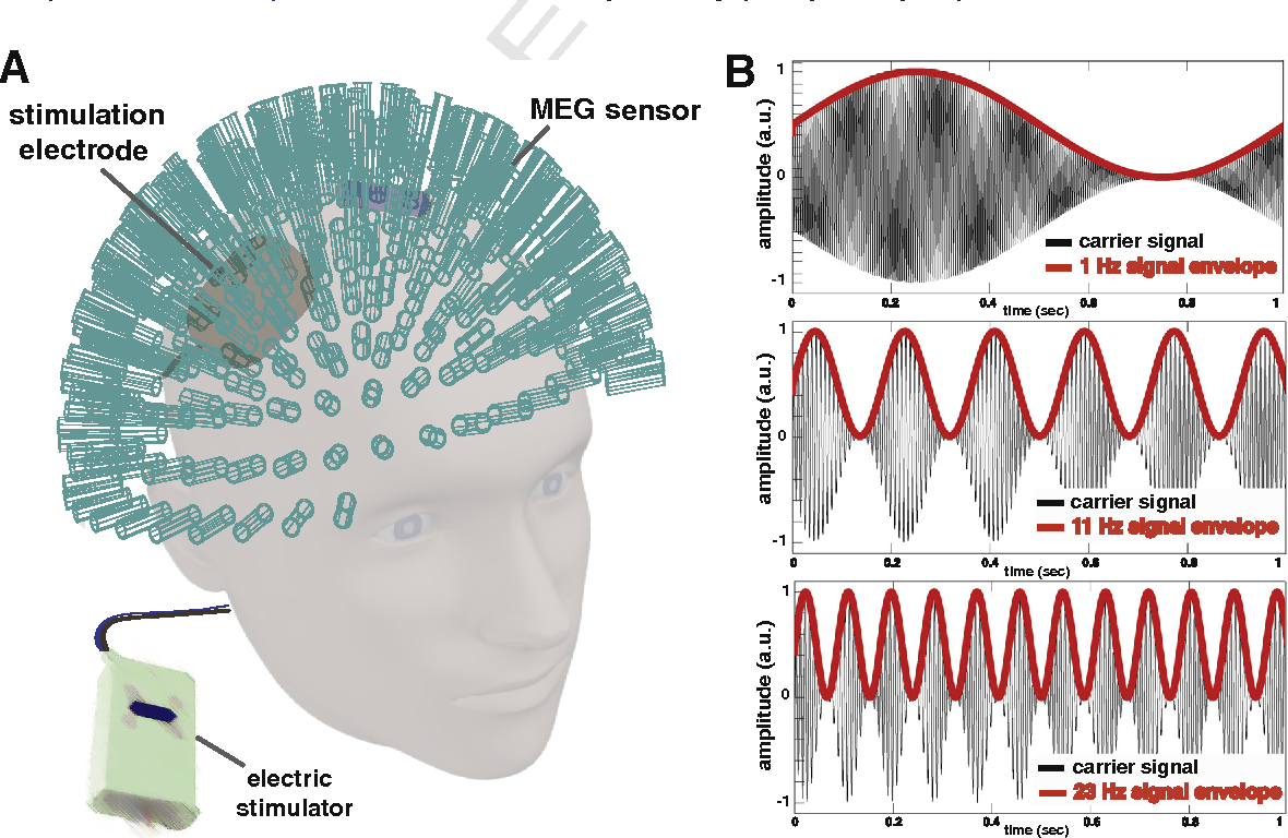 Transcranial Alternating Current Stimulation Semantic Scholar Diagram Is This Relevant 2016 Bold Signal Effects Of