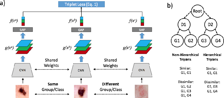 Figure 1 for Collaborative Human-AI (CHAI): Evidence-Based Interpretable Melanoma Classification in Dermoscopic Images