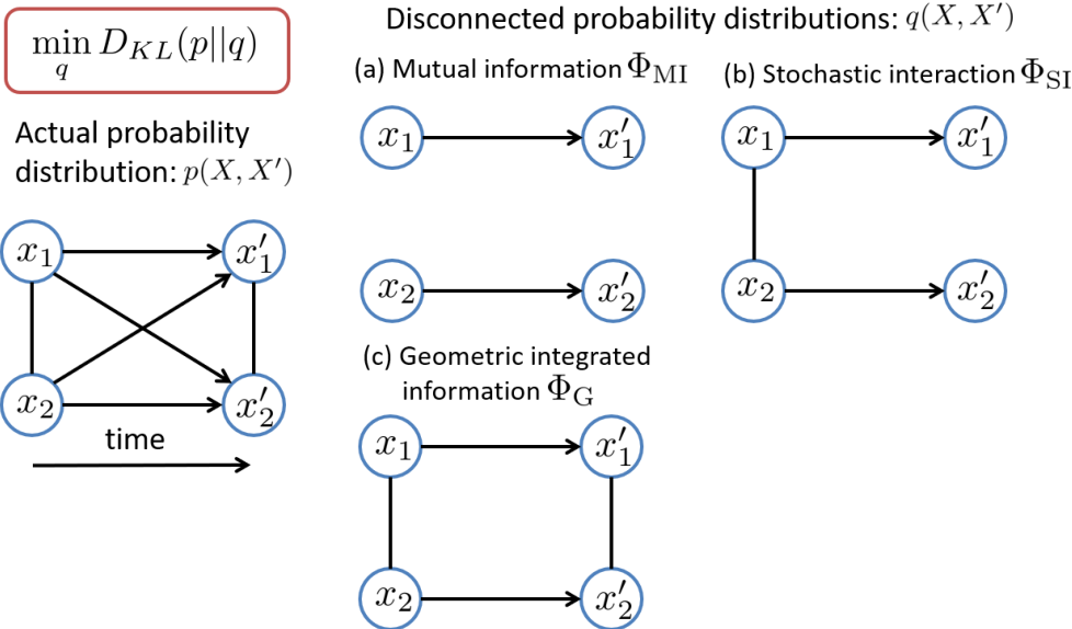 Figure 1 for Efficient Algorithms for Searching the Minimum Information Partition in Integrated Information Theory
