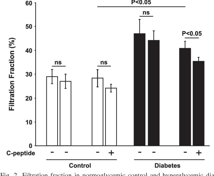 Proinsulin C Peptide Reduces Diabetes Induced Glomerular