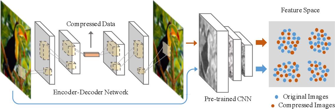 Figure 3 for Discernible Compressed Images via Deep Perception Consistency