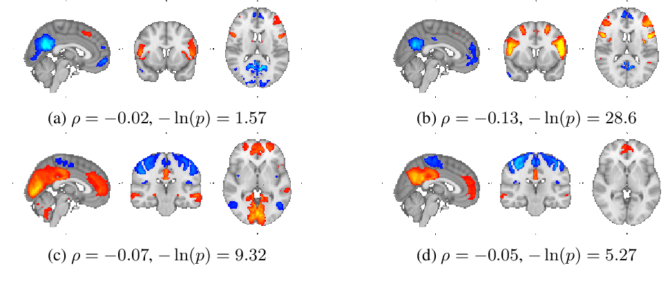 Figure 2 for Learning Robust Hierarchical Patterns of Human Brain across Many fMRI Studies