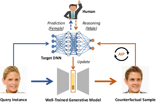 Figure 1 for Generative Counterfactuals for Neural Networks via Attribute-Informed Perturbation