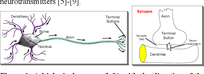 Figure 1 for Exploiting Heterogeneity in Operational Neural Networks by Synaptic Plasticity