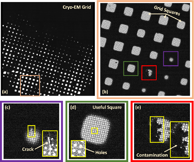 Figure 1 for Attention-guided Quality Assessment for Automated Cryo-EM Grid Screening