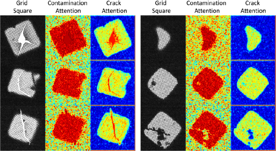 Figure 4 for Attention-guided Quality Assessment for Automated Cryo-EM Grid Screening