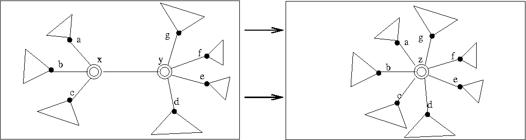FIGURE 1.9: An order-preserving contraction of an edge xy. The neighbors of x and y are cyclically ordered. The edge is removed and x and y are identified, so that the cyclic order of neighbors of x and y about the edge is preserved.