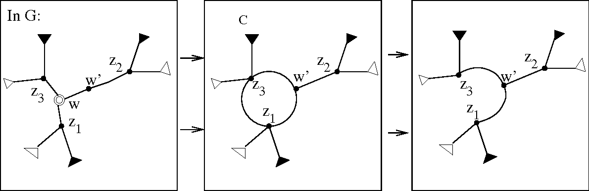 FIGURE 1.16: If w is a C node but at least one of z1, z2, and z3 is a non-neighbor of w, the case can be reduced to that of Figure 1.15 by selecting a neighbor w′ to serve in the role of w.