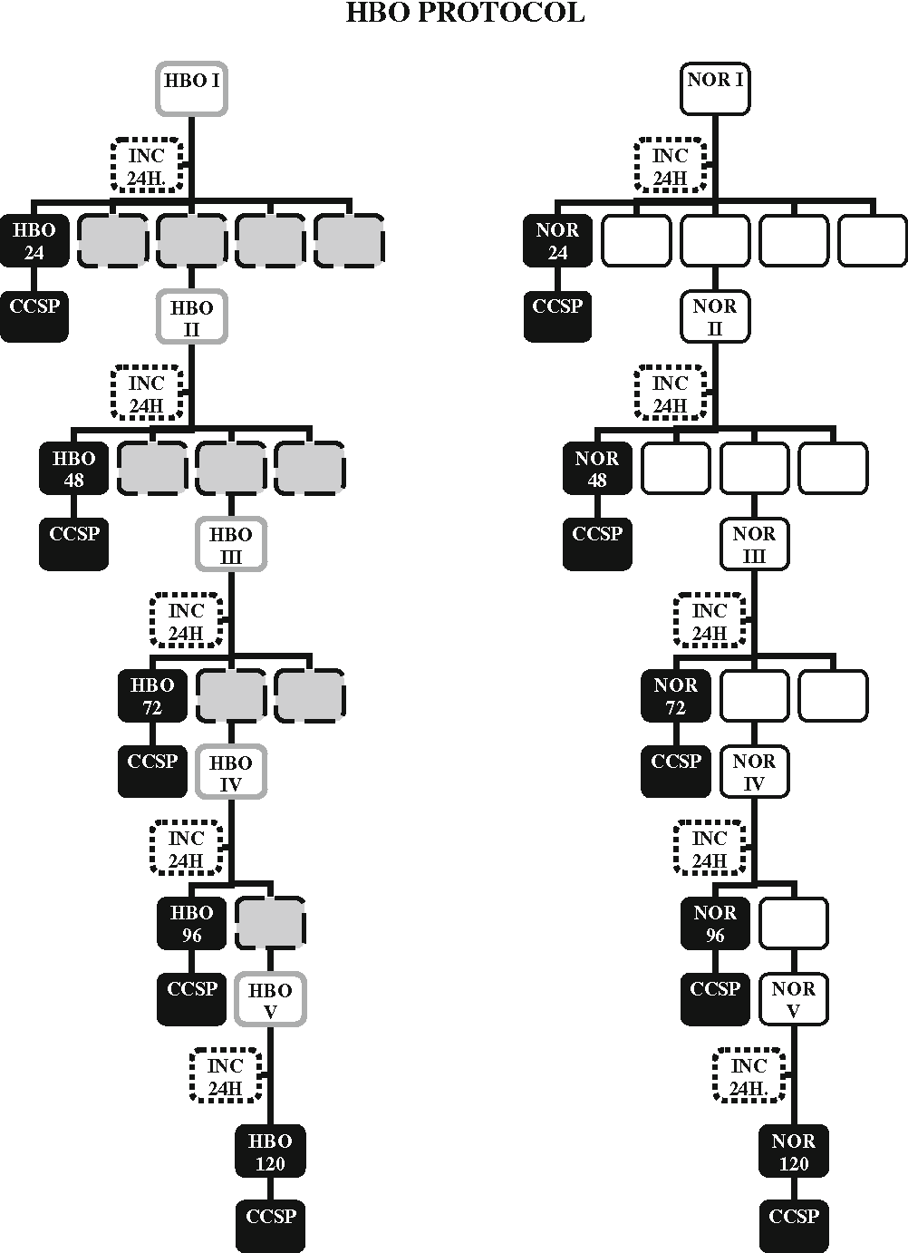 Fig. 1 Flowchart of experimental conditions for all cell lines. Cells were exposed to HBO (100% O2, P = 280 kPa, 60 min) or NOR (P = 100 kPa, 21% O2, t = 60 min) conditions, for five sessions, once a day and incubated with 5% CO2, at h = 37 C, for an additional 24 h (24 h INC). At the end of each treatment, a CCSP was removed, centrifuged and stored at -80 C and b cells were stained with hematoxylin/eosin solution. HBOxx or NORxx describe the number of sessions and the total time after the first HBO session (HBOI)