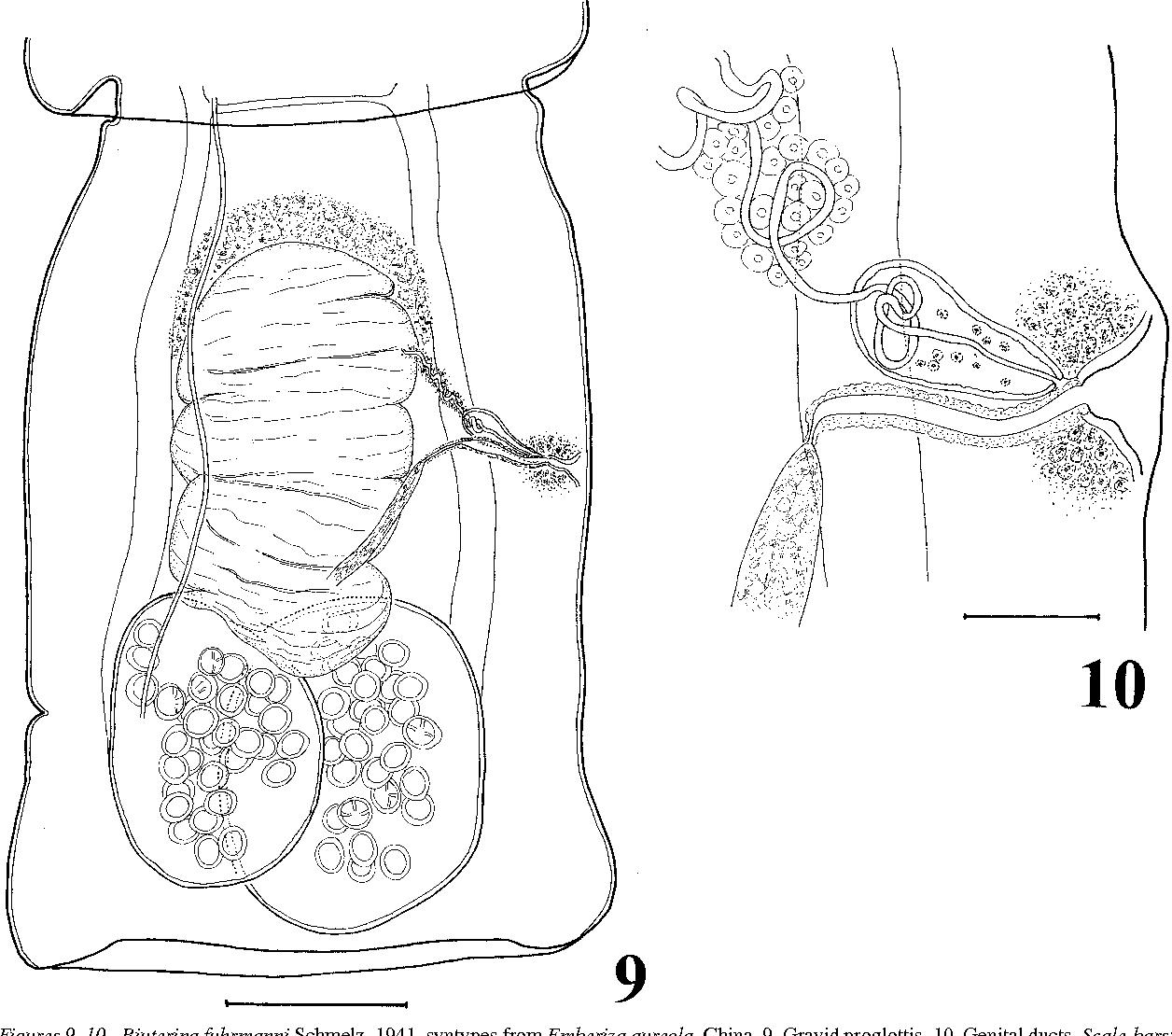 figure 9–10